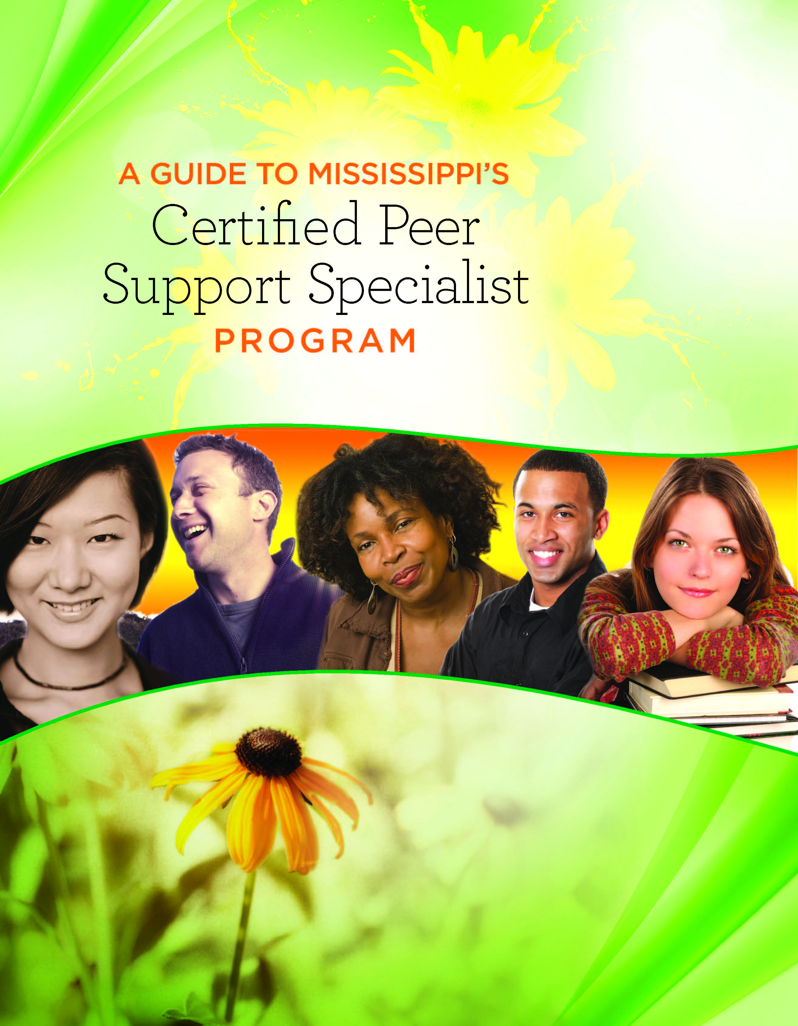 Cpss Documents Ms Department Of Mental Health